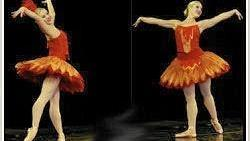 """Firebird"" by Indiana Ballet Theatre will be performed in Merrillville April 16. (Indiana Ballet Theatre, Handout)"